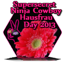 Super Secret Ninja Cowboy Hausfrau 2013 Award